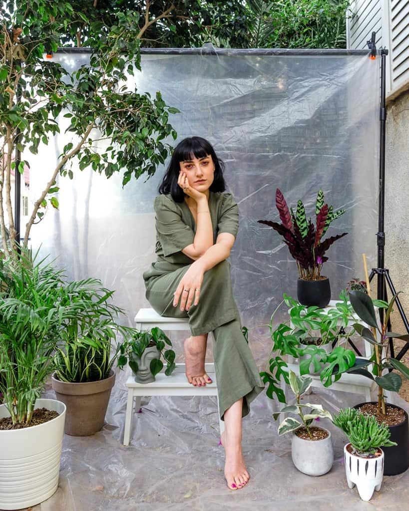 מדריך צמחי בית